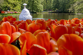2 or 3-day Keukenhof Package_1